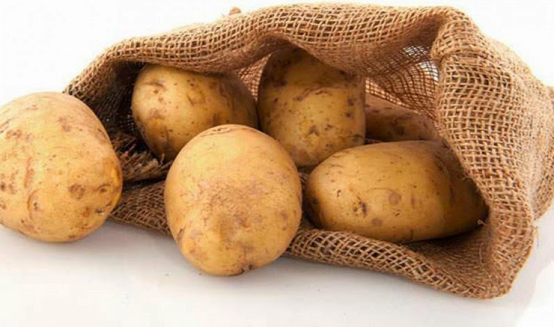 Patates İhracatına Başlamadan Öncesi İhracat Başvuru Dilekçesi