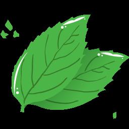 Kết quả hình ảnh cho icon lá cây