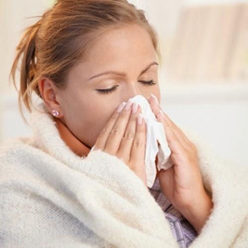 fakta influenza