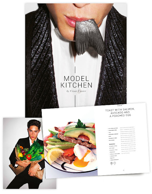 Cesar Casier Model Kitchen Book