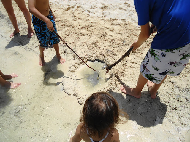 how to get to kailua beach from waikiki