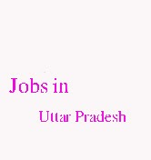Jobs in Uttar Pradesh