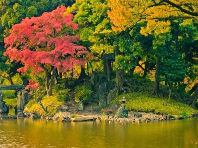 صور جميلة جدا لفصل الخريف .. جمال بلا حدود