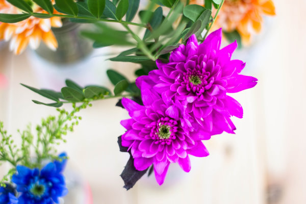 Blumengruß!