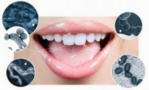 Sistm Pertahanan Canggih dalam Mulut Manusia