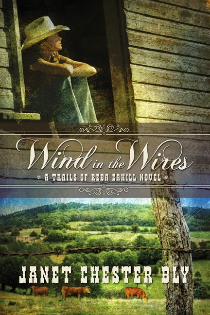 New Novel Release Wind in the Wires by Janet Chester Bly