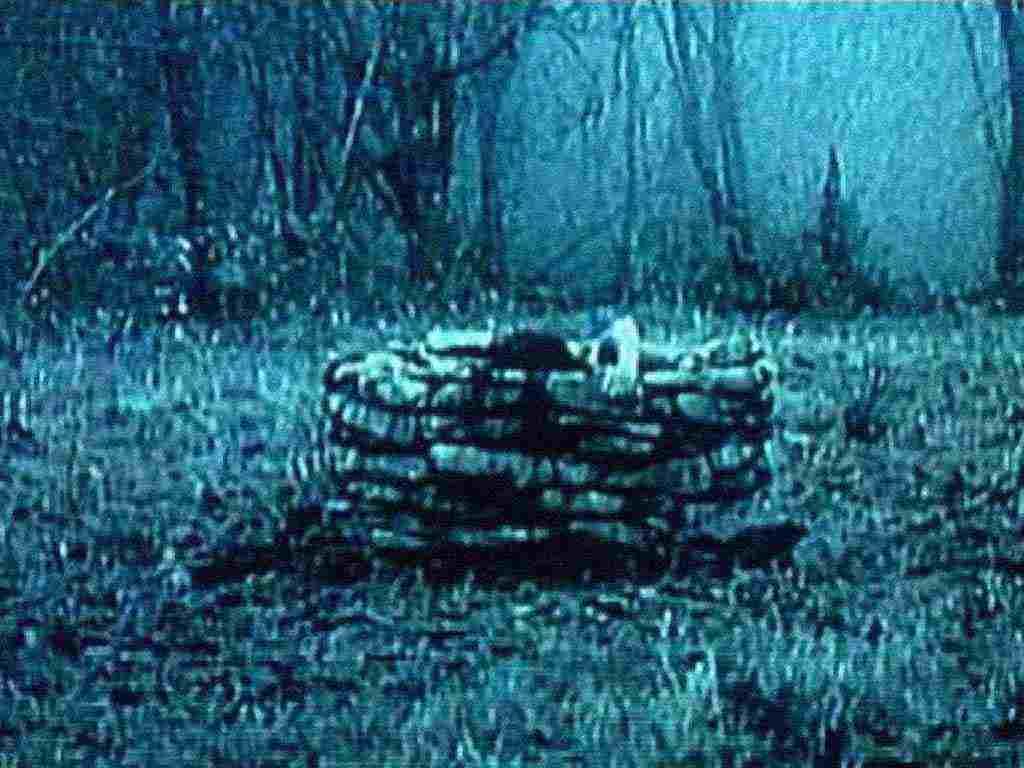 http://2.bp.blogspot.com/-GilgXGk3c5U/UINs_PikIJI/AAAAAAAAK9w/6eEIVseh-X8/s1600/animaatjes-the-ring-44852.jpg