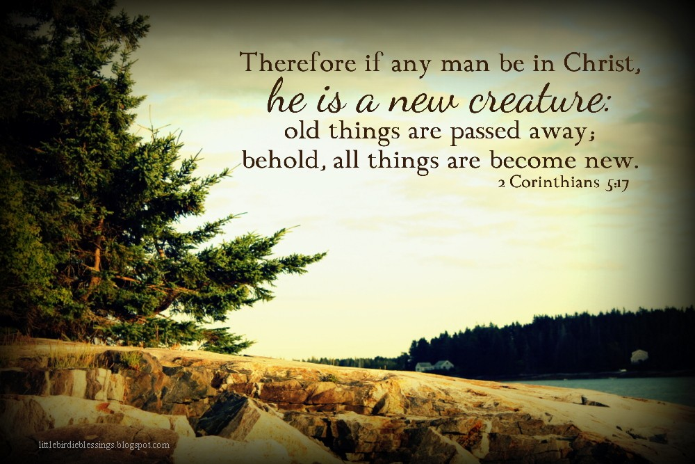Little Birdie Blessings : Scripture Thursday ~ Thoughts for the New Year