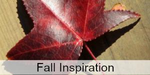 Seasonal Inspiration