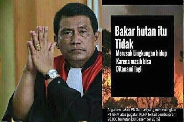 Argumen Hakim 'bakar hutan tidak merusak lingkungan' hebohkan netizen