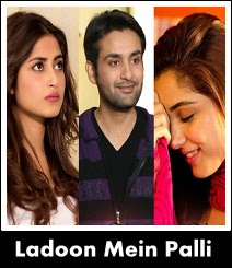 ladoon mai pali OST Title song of Geo Tv drama