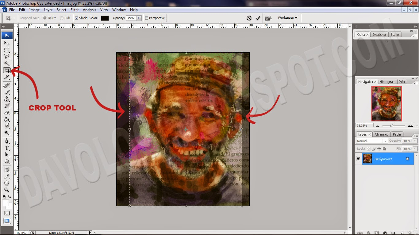tips merubah ukuran foto crop tool photoshop