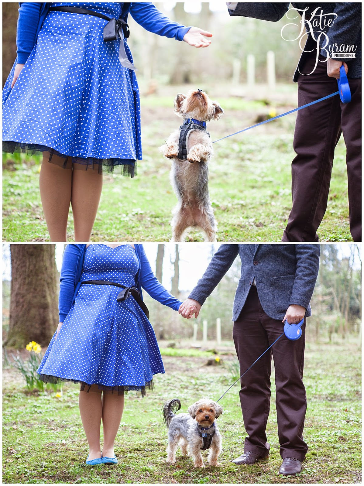 dog at wedding, disney up engagement shoot, minsteracres wedding, lord crewe arms blanchland, northumberland wedding, quirky wedding photography, disney wedding,