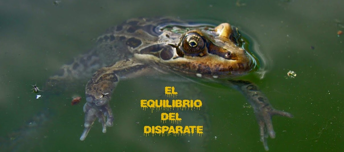 EL EQUILIBRIO DEL DISPARATE