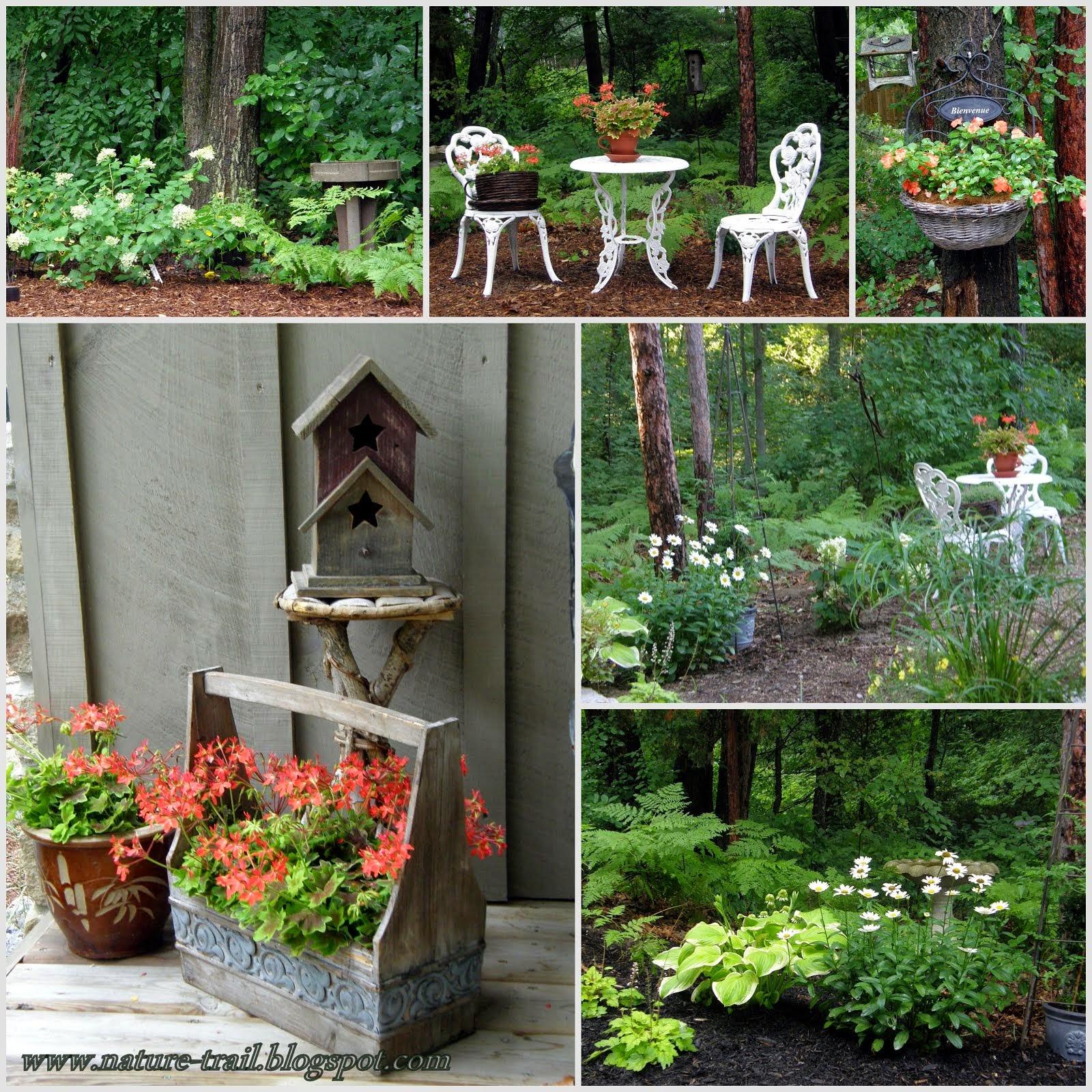 My Woodland Garden