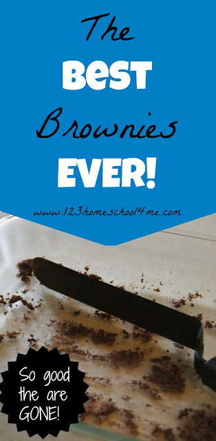 The Best Brownie EVER