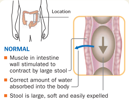 Normal function of intestine
