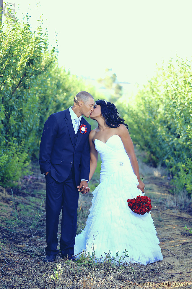 Gio Aplon And Stacey Part 2 Cape Town Wedding