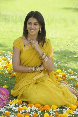 Actress_Genelia_in_Saree Wallpaper