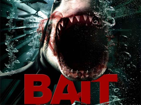 Affiche du film de requin Bait