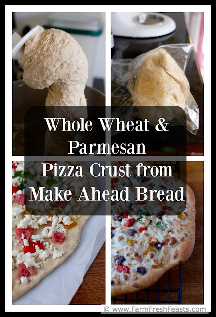 A pizza crust chock full of flavor from parmesan cheese, with a great chewy texture thanks to the addition of whole wheat flour. This recipe is made in stages, so when you've got a couple small chunks of time you'll end up with easy homemade pizza.