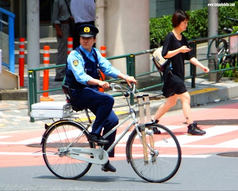 Bicycle Crimes in Japan