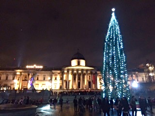 Pic of Norway's Christmas Tree lit up at night in Trafalgar Square with National Gallery behind