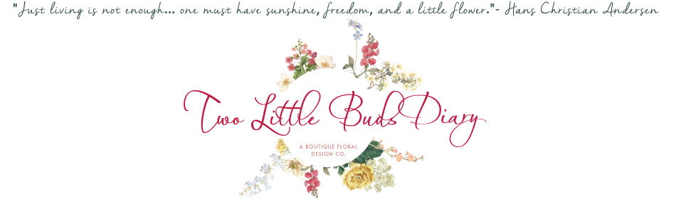 Two Little Buds Diary