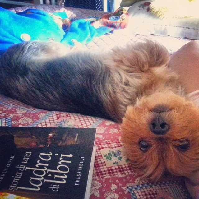 BABY - La mia compagna di letture
