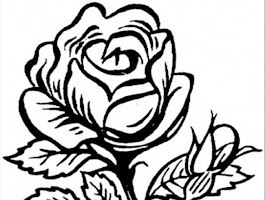 Beautiful Flower Coloring Sheets