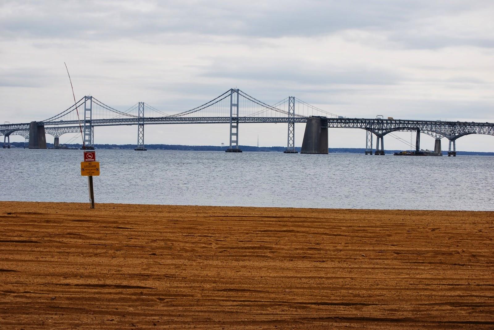 Vote no 39 malley sandy point fishing report for Chesapeake bay bridge fishing report