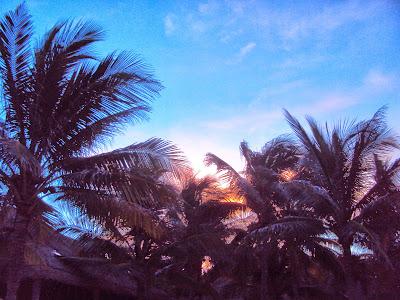 Luna de miel en la Riviera Maya