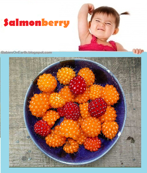 Baby Salmonberry