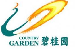 Country Garden Danga Bay condo 碧桂园,金海湾,马来西亚