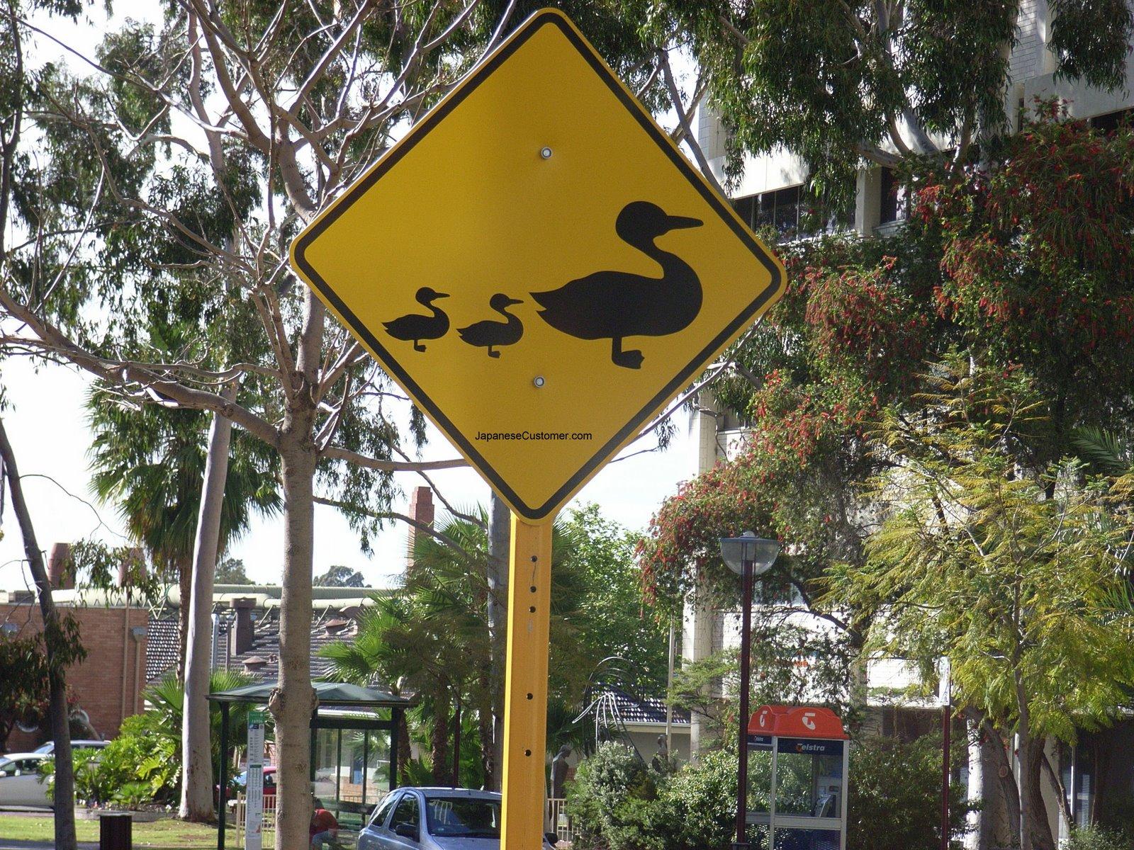 Australian street scene Copyright Peter Hanami 2007
