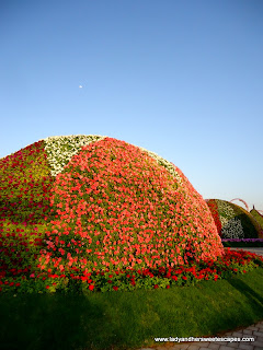 domes at Dubai Miracle Garden