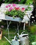 Svenska trädgårdsbloggar uppdelade efter växtzoner