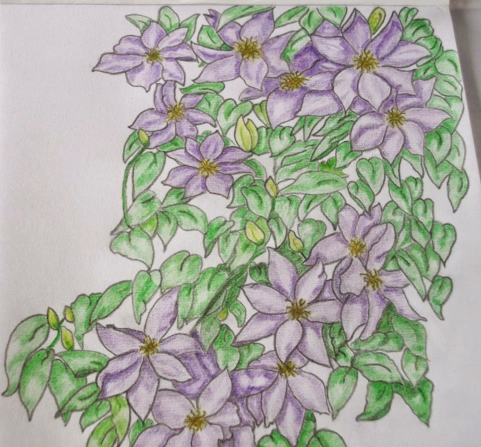 Drawing flowers i didnt think i could since then i have had the urge to draw flowers scenery that i now sell along with my polymer clay fabric rhinestone flower designs ccuart Images