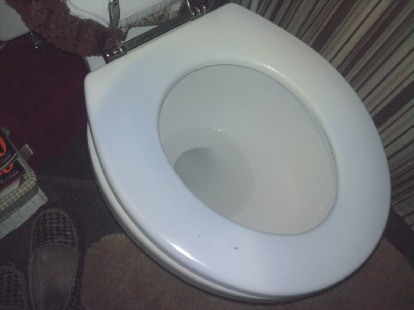 Kayla & Steve: The Blue Toilet Seat Mystery