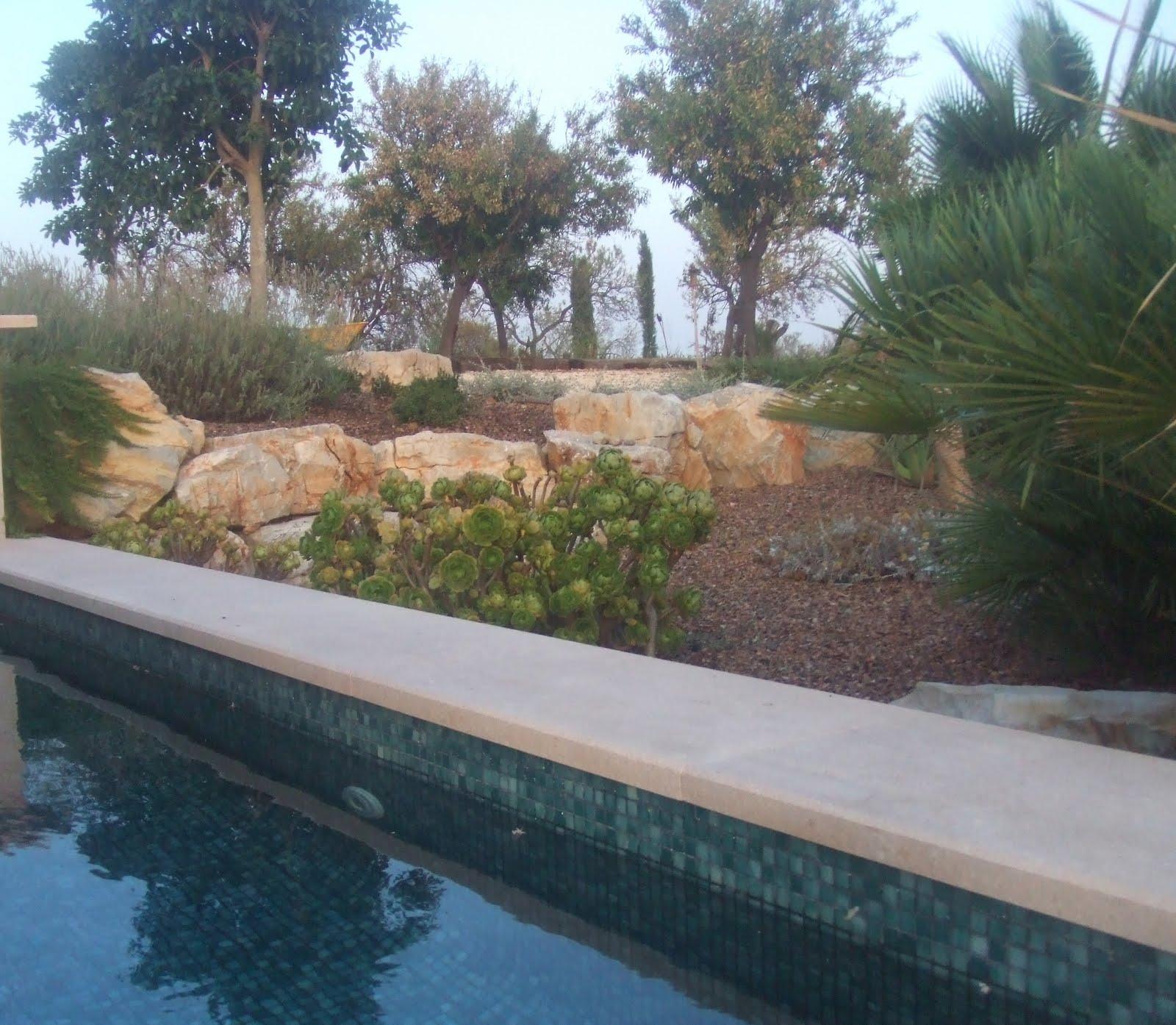 Ceres jardineria meditativa - Coste mantenimiento piscina ...
