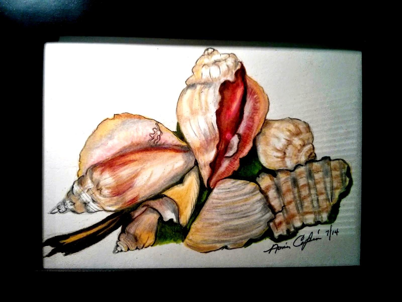"""De la colección marina """"Shells"""""""