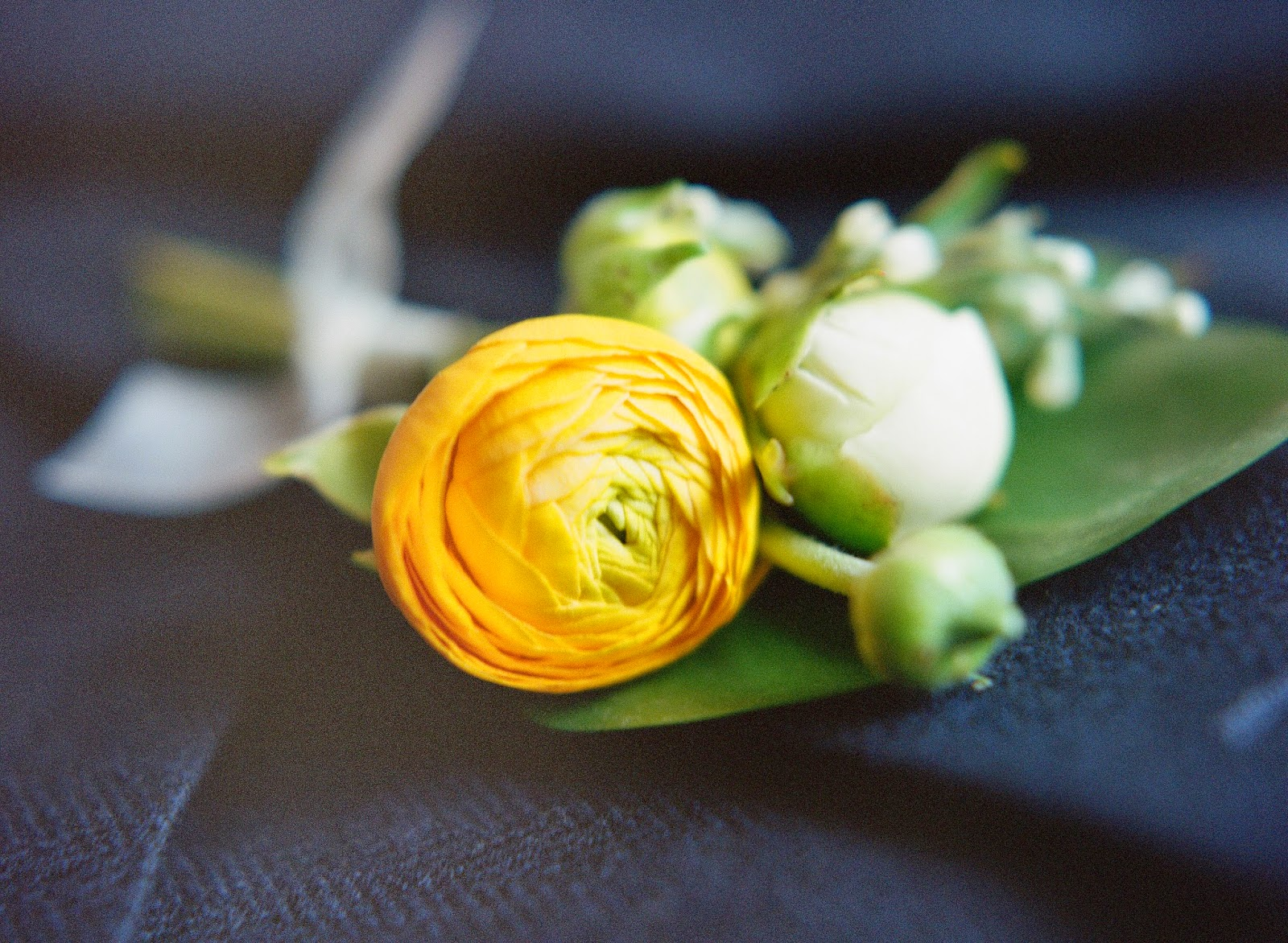 yellow ranunculus and peony boutonniere tied tied with silk against a navy suit coat