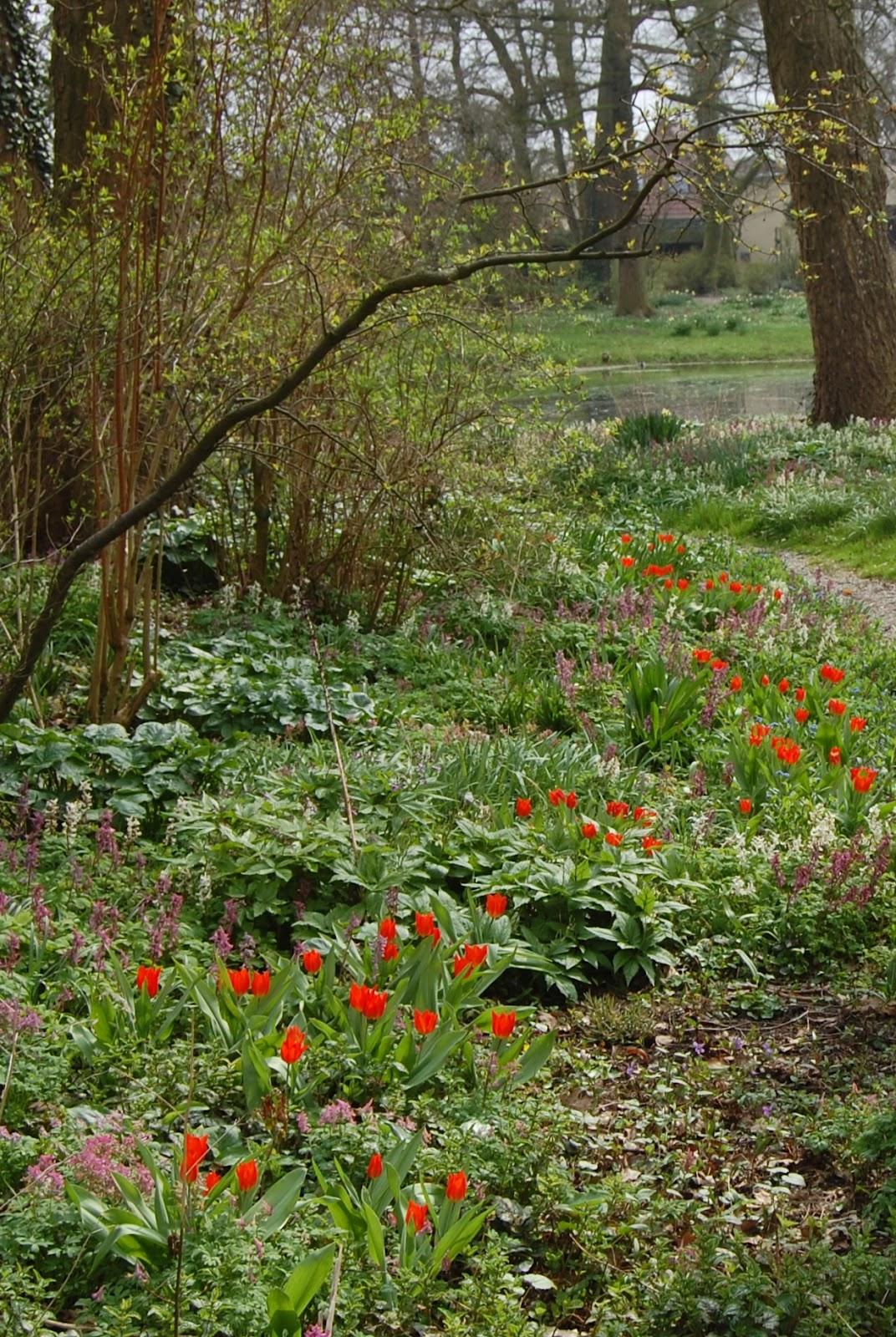 Jan Wilde een Tuin: april 2012