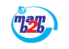 MAM B2B Is A Software Development Firm ::