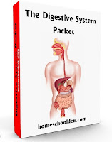 http://homeschoolden.com/2013/05/08/digestive-system-free-worksheets/