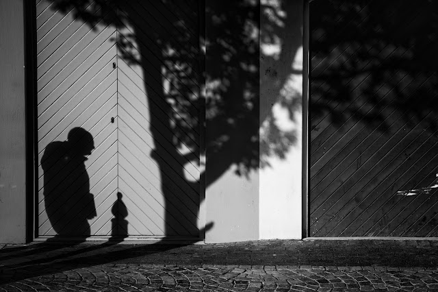A shadow of a man walks under the shadow of a tree - a South African street photograph.