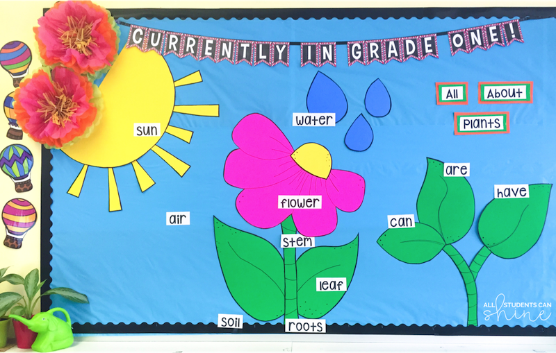 This Cut And Paste Activity Was A Perfect Way To Review The Plant Life
