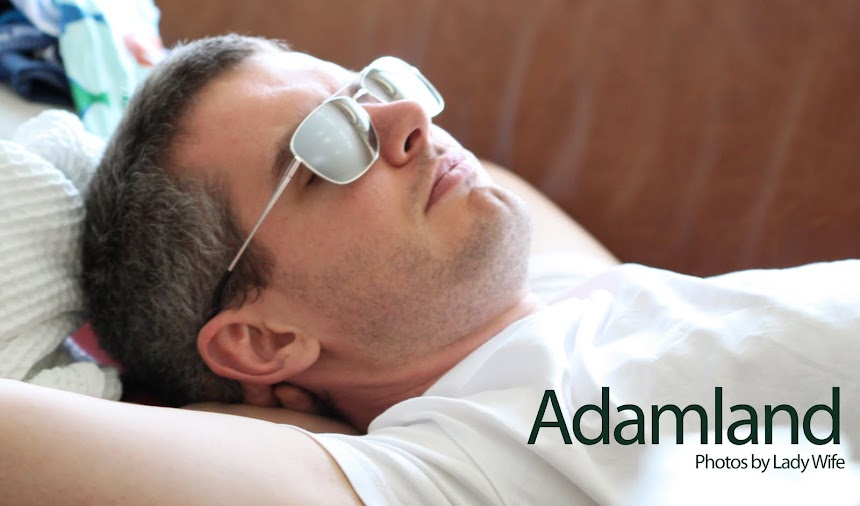 Adamland