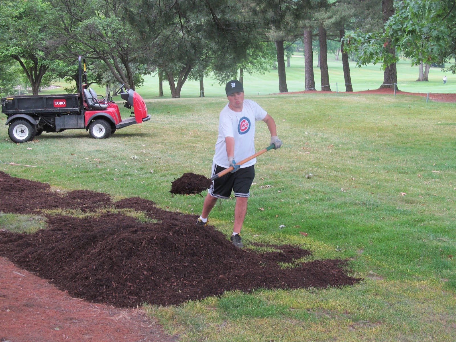 meadowbrook country club golf course maintenance tree care management
