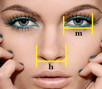 Cara Alami Agar Hidung Mancung